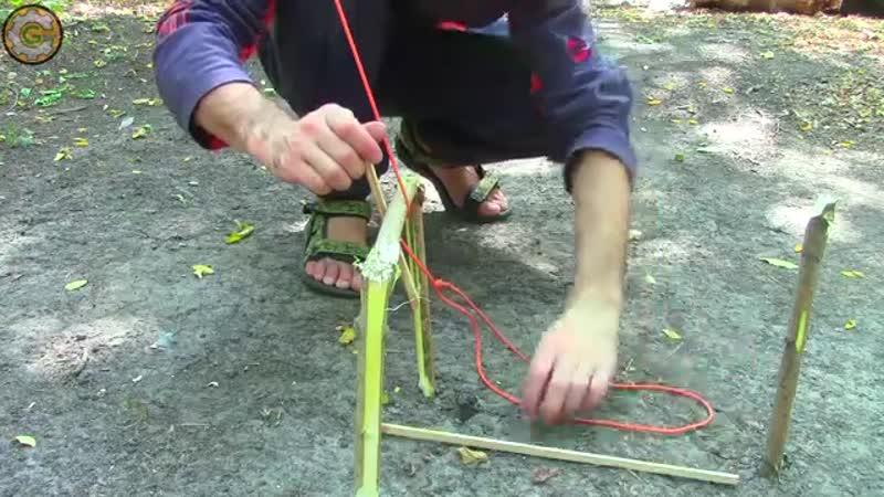 Как сделать ловушки для мелкой дичи