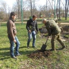 Жители Таганрога с ограниченными возможностями примут участие в озеленении города