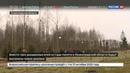Новости на Россия 24 • С мемориала памяти жертв катастрофы над Синаем украли шесть елок