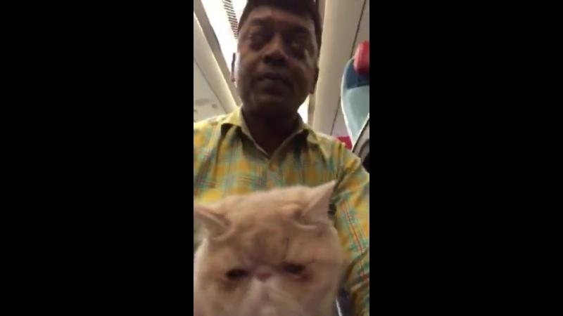 Полет Москва(Россия)- Стамбул(Турция)- Энфида (Тунис) - Катманду(Непал)- Дели(Индия)