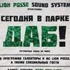 17.08.2014 Lion Posse: СЕГОДНЯ В ПАРКЕ ДАБ!