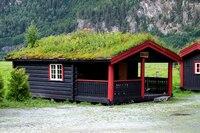Не смотря на то, что озеленение крыш - относительно неновое направление дизайна, сегодня оно стало очень...