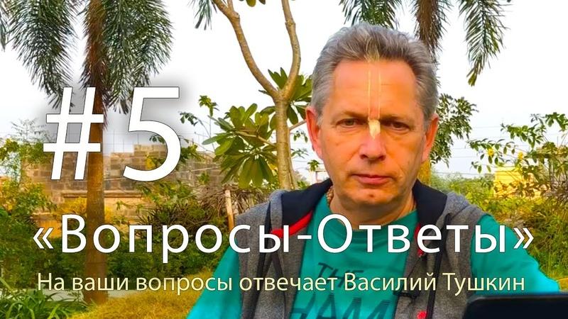 Вопросы Ответы Выпуск 5 Василий Тушкин отвечает на ваши вопросы
