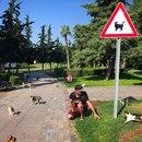 Сергей Трейсер фото #18