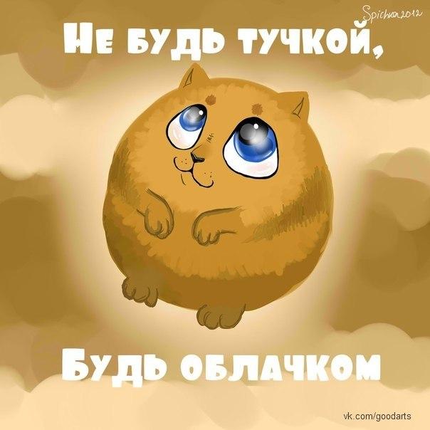http://cs407324.userapi.com/v407324717/577e/aW9qcNt6s18.jpg