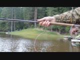 Kola-Salmon DH-T8 11,3