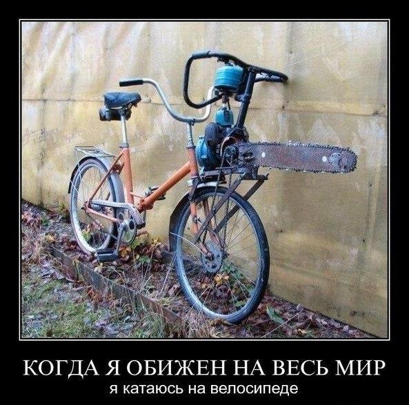 http://cs14115.userapi.com/c7008/v7008113/26fd/HgTql8CZ8KI.jpg