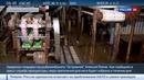 Новости на Россия 24 Задержан гендиректор шикотанского рыбокомбината Островной