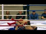 Live: Союз MMA России