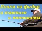 Ловля на фидер,Алексей Фадеев о тактике и тонкостях фидерной ловли «Рыболовная школа»