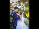 Свадьба Анжелики и Александра