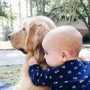 Не жди, что твой ребёнок будет таким, как ты или таким, как ты хочешь.