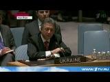 Украина новости сегодня. ПОСИДЕЛКИ в Совбезе ООН  = 29.05.214  Россия Украина Китай =