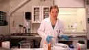 Chemistry Experiment: Indigo dye