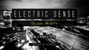Electric Sense 039 March 2019 Guestmix by Olga Misty