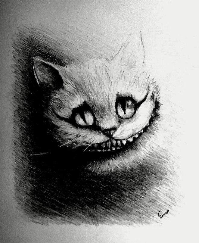 чеширский кот карандашом картинки