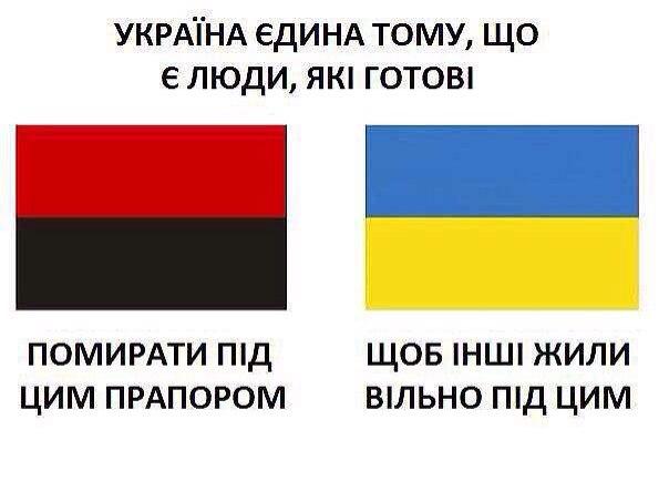 Национальный диалог улучшит ситуацию в Украине, - глава ОБСЕ - Цензор.НЕТ 668