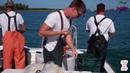 Tại sao cần thủ nước ngoài họ câu được nhiều cá thế nhật ký đi biển