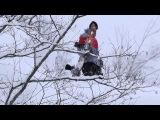 Monster Energy - Will Jackways Japan Powder Edit