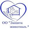 Приют п.Краснообск. Новосибирск с 18 мая 2007 г
