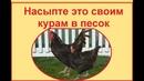 Привет из СССР - это для кур от блох, пероеда, пухоеда и других паразитов