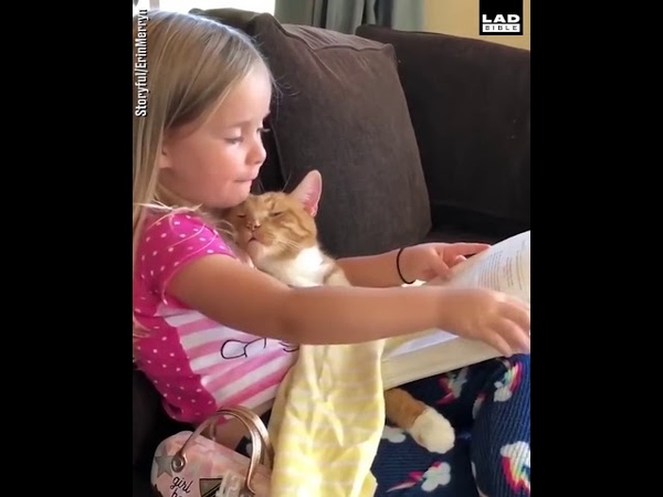 MEOW | Little Girl Reads Bedtime Story To Cat