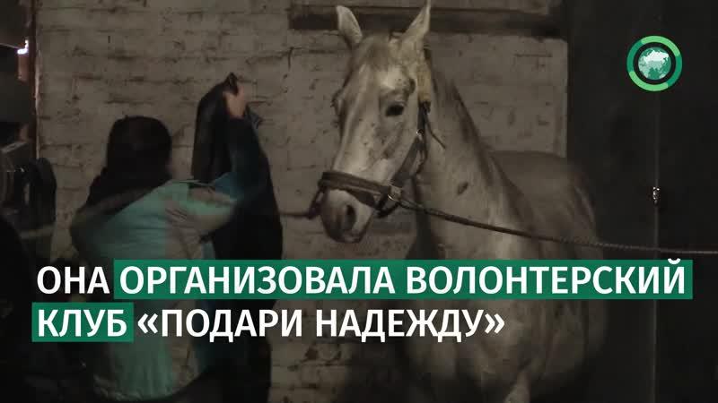 400 спасенных от скотобойни лошадей — ветеринар из Москвы выкупает обреченных животных. ФАН-ТВ