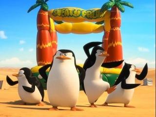 Penguins of Madagascar 2014//пингвины Мадагаскара 2014 смотреть//английский по фильмам
