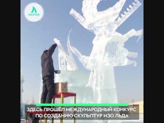 Ледяные скульптуры | АКУЛА
