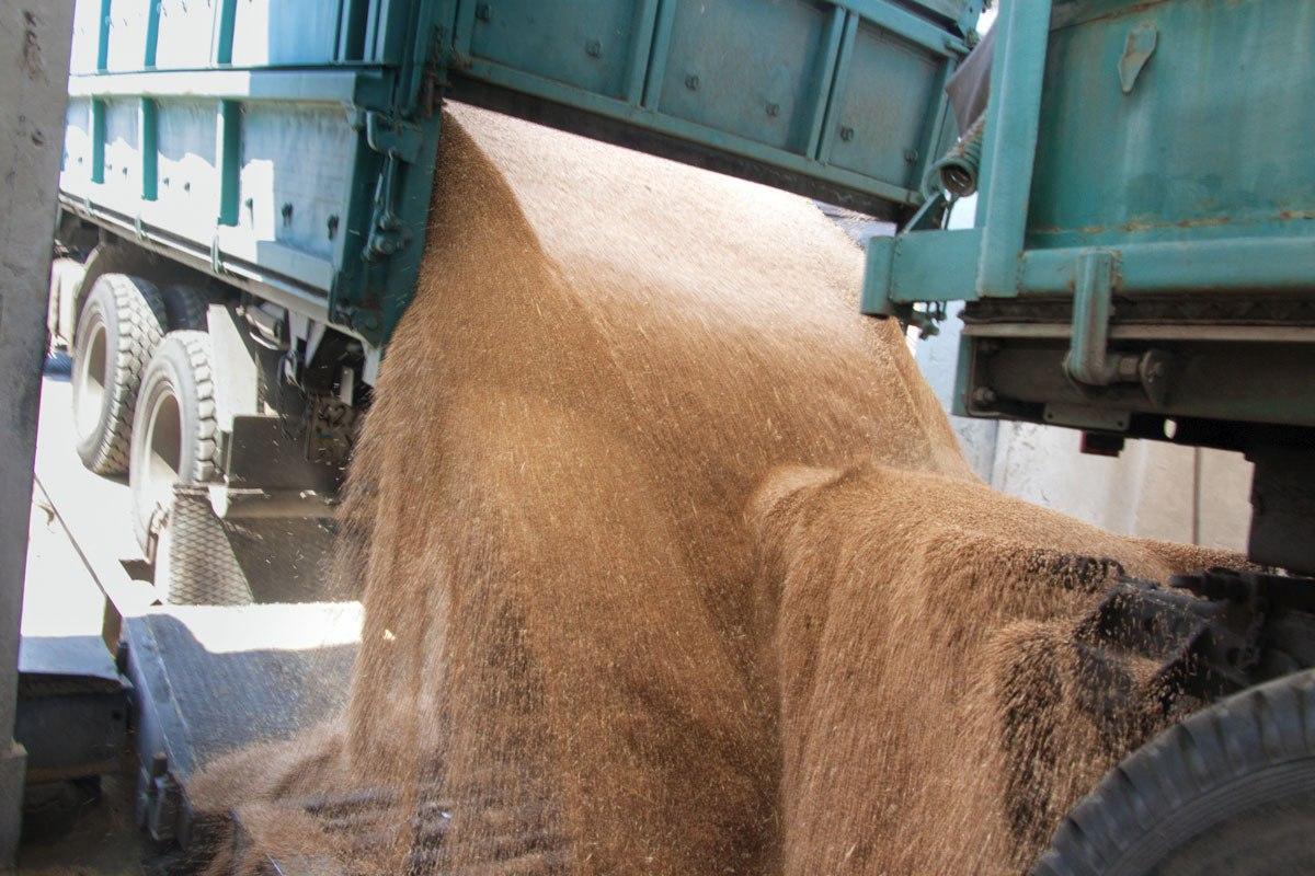 В Ростовской области ветинспекторы задержали 3 тонны зерна без сопроводительных документов