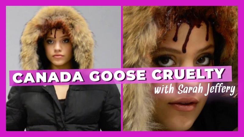 Sarah Jeffery Exposes Canada Gooses Cruelty