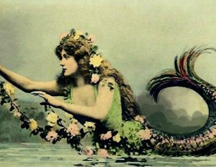 Старинная открытка русалки, картинки алеша
