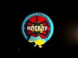 НАЦИОНАЛЬНАЯ ЛИГА СТРЕЛЬБЫ из БЛОЧНОГО ЛУКА Логотип