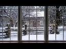 겨울 winter '배경화면 background' 눈 snow 1