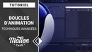 TUTO Boucles d'animations Avancées Simulation Walkcycle