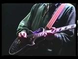 Pale Saints - Special Live Member Report Interview + Hair Shoes Live