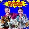 Цирк Мстислава Запашного г.Армавир