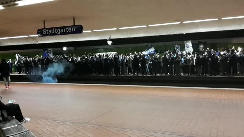 Porto Ultras 🇵🇹