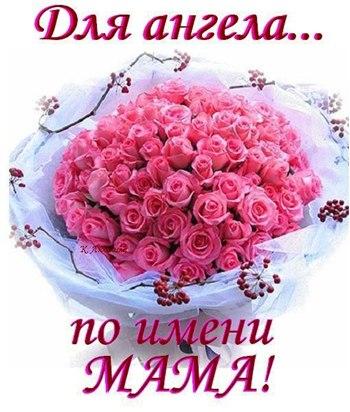 http://cs319218.userapi.com/v319218659/44b4/fvXYYBbu8zs.jpg