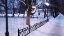 Апгрейд обновлённого сквера Мороза активистом Михаилом Шпаковым! Брянск