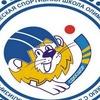 Волга-СДЮСШОР-территория хоккея с мячом
