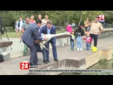 В парке имени Гагарина в Симферополе в пруд выпустили лебедей. Без комментариев