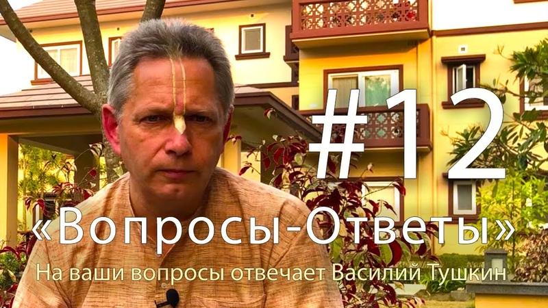 Вопросы Ответы Выпуск 12 Василий Тушкин отвечает на ваши вопросы