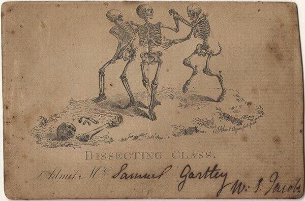 Билет на занятие по анатомии в морге для для студентов-медиков,