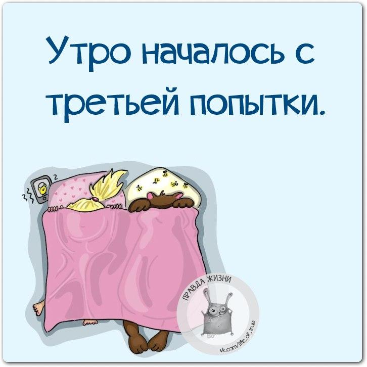 https://pp.vk.me/c543106/v543106123/1d23f/tHY_K-KOj-E.jpg