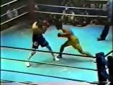 Yuri Arbachakov vs Rolando Bohol (Юрий Арбачаков vs Роландо Бохол) 20.12.1990 г.