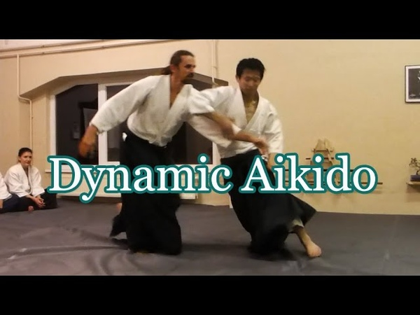 躍動する合気道 Dynamic Aikido 07 in Hungary