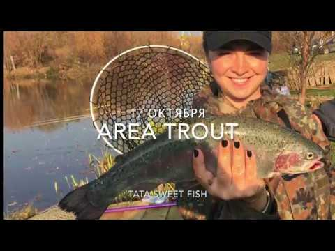 Как я ловлю форель на платнике? Весело ;) Area trout fishing its fun
