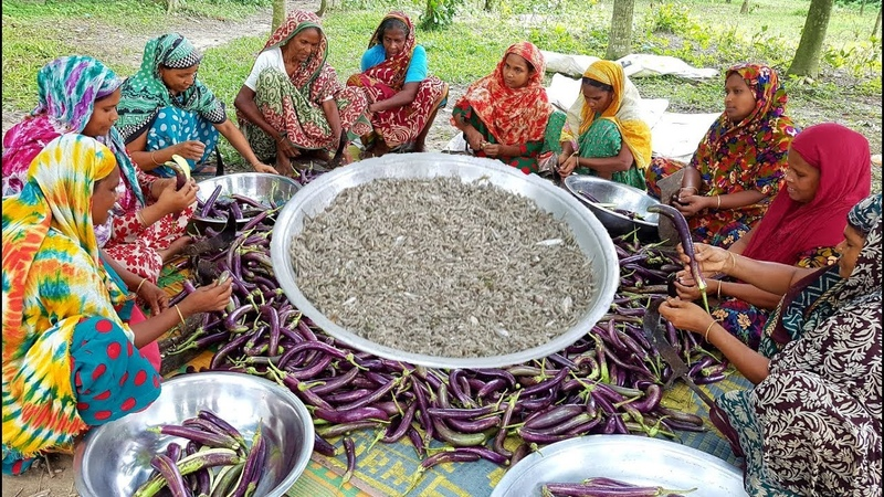 Long Purple Eggplant Roast - Too Tiny Shrimp Mixed Brinjal Curry Cooking By Village Women