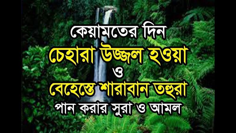 কিয়ামতের দিন চেহারা উজ্জল ও শারাবান তহুরা 2